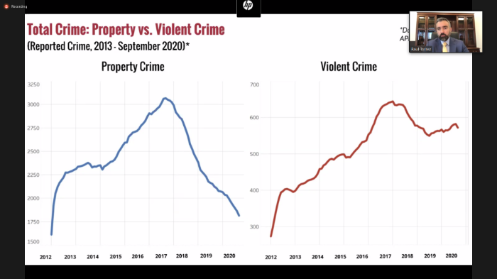 """CrimeSTAT BRIEFING 2020: """"The Tale of Two Cities"""""""